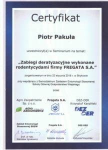 certyfikat 216x300 - certyfikat