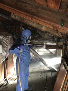 Chemiczne zwalczanie szkodników drewna w wykonaniu firmy EPAK
