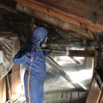 Xilix gel3 e1552486923282 150x150 - Xilix gel - skuteczny sposób na szkodniki drewna