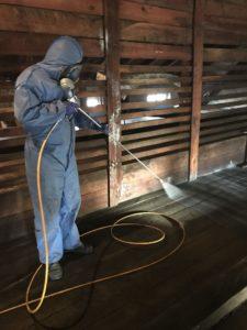 usuwanie korników 3 e1555489037278 225x300 - Usuwanie korników i szkodników drewna - drewniane poddasze