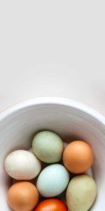 eggs 150x300 - eggs